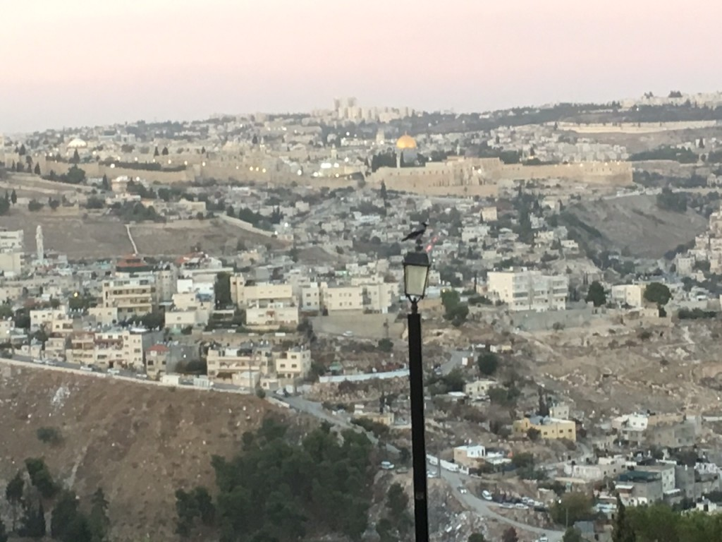 This was our first glimpse overlooking the Old City of Jerusalem  - and we were breathless!  The whole team can't wait until tomorrow when we explore up close-
