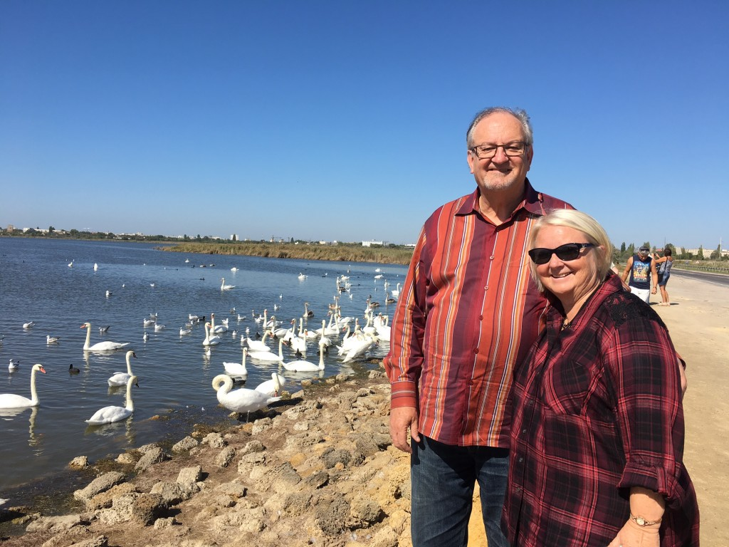 For some reason this lake near the Black Sea attracts many, many SWANS, and our hosts thought you'd like to see-